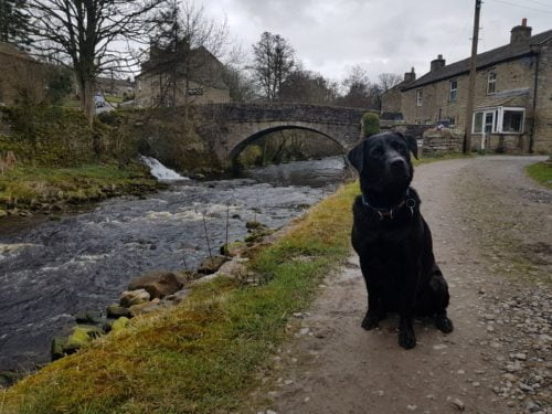 Danny in Swaledale