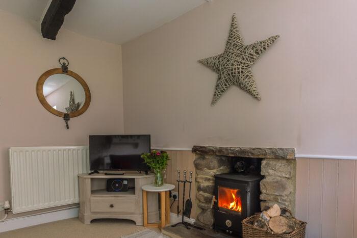 Cosy wood burner and smart TV